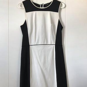 Sleeveless Theory Black and White dress Size 6